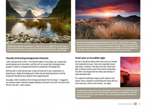 Living landscapes - page example