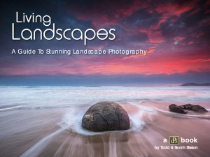 Living landscapes - title