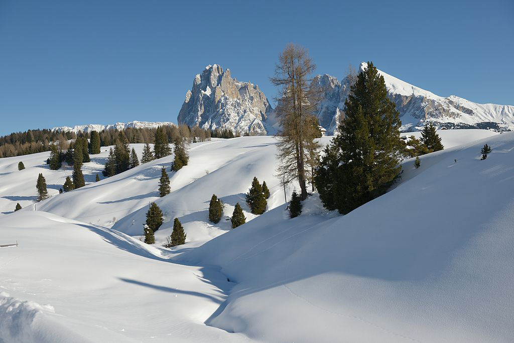 The Seiser Alm in South Tyrol
