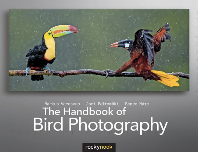 Handbook of Bird Photography