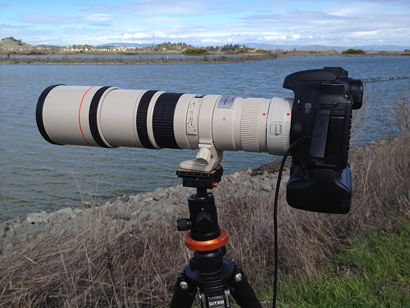 Canon 400mm lens with 1.4X extender attached to it.