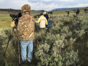 Yellowstone photographers with camouflage